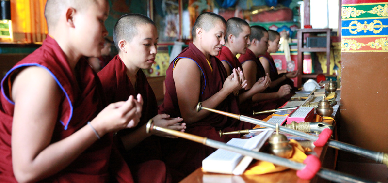 Nuns doing their daily practice at Nagi Gompa